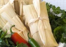 täta tamales upp Royaltyfria Bilder