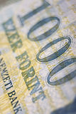 täta ungerska pengar upp Royaltyfria Bilder