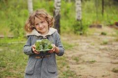 Tätigkeit des Sommers im Freien für Kinder - Schnitzeljagd, Blätter, die im Eikasten sortieren Lizenzfreie Stockfotos