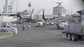 Tätigkeiten und Transport des Hafens stock footage