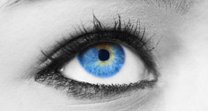 tätt öga för blue upp arkivbilder