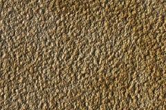 tätt övre för asfalt Royaltyfria Foton