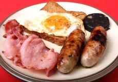 tätt övre för frukost Royaltyfri Fotografi