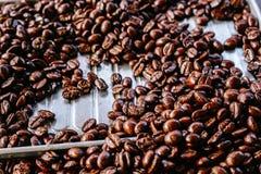 tätt kaffe för böna som skjutas upp Fotografering för Bildbyråer