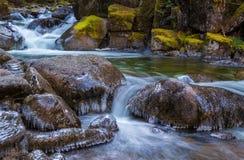Täuschungs-Nebenfluss, Washington State Stockfotografie