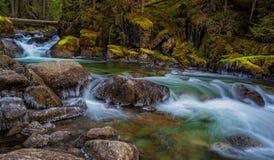 Täuschungs-Nebenfluss, Washington State Lizenzfreies Stockbild