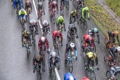 Tävlings- cyklister på den loppRund hm hålan Finanzplatz Frankfurt Royaltyfria Bilder