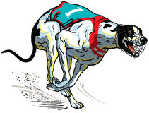 Tävlings- engelsk vinthund vektor illustrationer