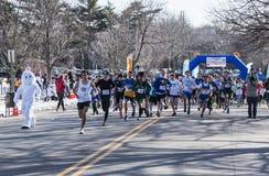 Tävlings- löpare för påskkanin på en 5K arkivbilder