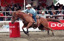 tävlings- rodeo för trummadamtoalett Royaltyfri Bild