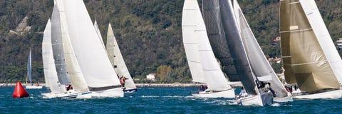 tävlings- segelbåt Fotografering för Bildbyråer