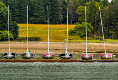 Tävlings- segelbåtar med nummer som anslutas arkivfoto