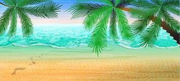 tła piłki plaży piękna pusta lato siatkówka Widok na morzu i horyzont pod drzewkami palmowymi ilustracji