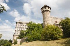 Tårgas på sprayburktorn och en medeltida fästning i Buda Castle i Budapes Royaltyfria Bilder