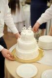 Tårta med Snowmen Royaltyfria Foton