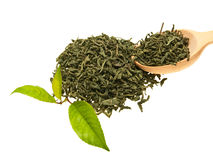 Tè & fogli. Fotografie Stock