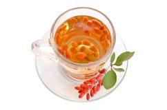Tè antiossidante fresco di Goji immagini stock libere da diritti