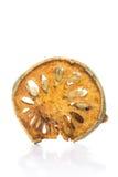 Tè asciutto della frutta di cotogno del bengala Fotografia Stock Libera da Diritti