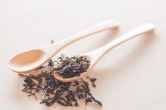 Tè asciutto e cucchiai di legno Immagine Stock