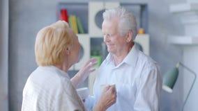 Tè bevente delle vecchie coppie amorose felici e parlare attraverso l'uno dall'altro stock footage