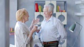 Tè bevente delle vecchie coppie amorose felici e parlare attraverso l'uno dall'altro archivi video