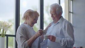 Tè bevente delle vecchie coppie amorose felici e parlare attraverso l'uno dall'altro video d archivio