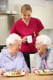 Tè bevente di personale che dispensa le cure con una donna dei due anziani fotografie stock libere da diritti