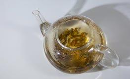 Tè bianco di Willow Bark Medical Tè dal primo piano di Willow Bark fotografie stock libere da diritti