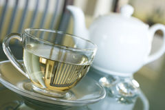 Tè bianco in tazza trasparente Fotografia Stock Libera da Diritti