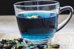 Tè blu immagini stock
