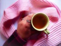 Tè caldo Fotografia Stock Libera da Diritti