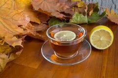 Tè caldo con il limone Fotografia Stock Libera da Diritti