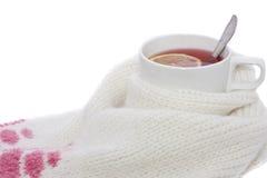 Tè caldo della frutta con il limone spostato in una sciarpa Fotografie Stock Libere da Diritti