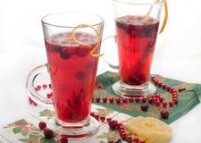 Tè caldo di inverno Fotografia Stock
