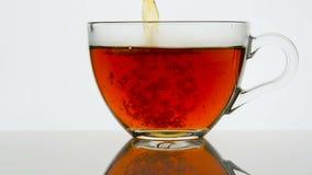 Tè che versa nella tazza di tè di vetro su un fondo leggero closeup archivi video
