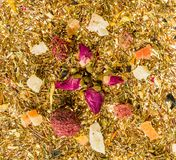 Tè cinese asciutto Fotografia Stock