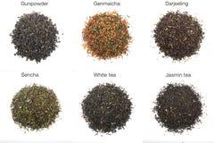 Tè, colpo in studio Fotografia Stock