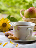 Tè con i biscotti fotografie stock
