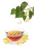 Tè con i fiori del linden Fotografia Stock Libera da Diritti