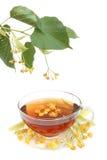 Tè con i fiori del linden Fotografia Stock