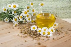 Tè con i fiori della camomilla immagini stock