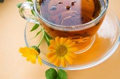 Tè con il calendula Immagini Stock Libere da Diritti