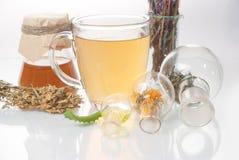 tè con il piccoli vaso e tazze fotografia stock libera da diritti