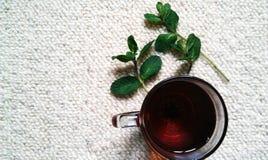 Tè con la menta Fotografie Stock