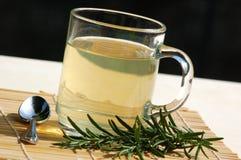 tè con rosmarino fotografia stock libera da diritti