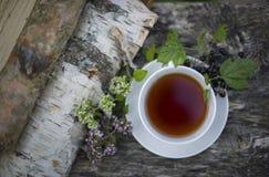 Tè con un ribes ed i ramoscelli di origano Fotografia Stock
