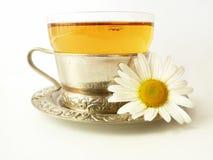 Tè con una camomilla Fotografia Stock Libera da Diritti