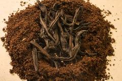 Tè contro caffè ` Del nido del caffè del ` Immagini Stock