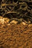 Tè contro caffè Due piccoli mucchi Immagine Stock Libera da Diritti