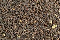 Tè dei mirtilli di Veluwse. Fotografia Stock
